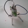 RoboBiologia: costruiamo un semplice robot morbido per discutere di Scienze