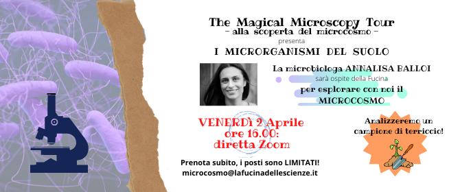 The MMT: I microrganismi del suolo