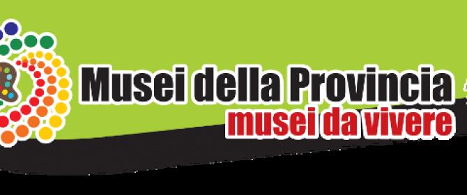 Musei della Provincia