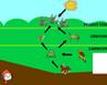 Il gioco della rete alimentare con Scratch