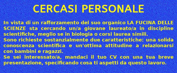 Cercasi personale
